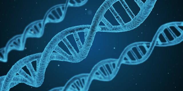 קביעת תור לבדיקות גנטיות